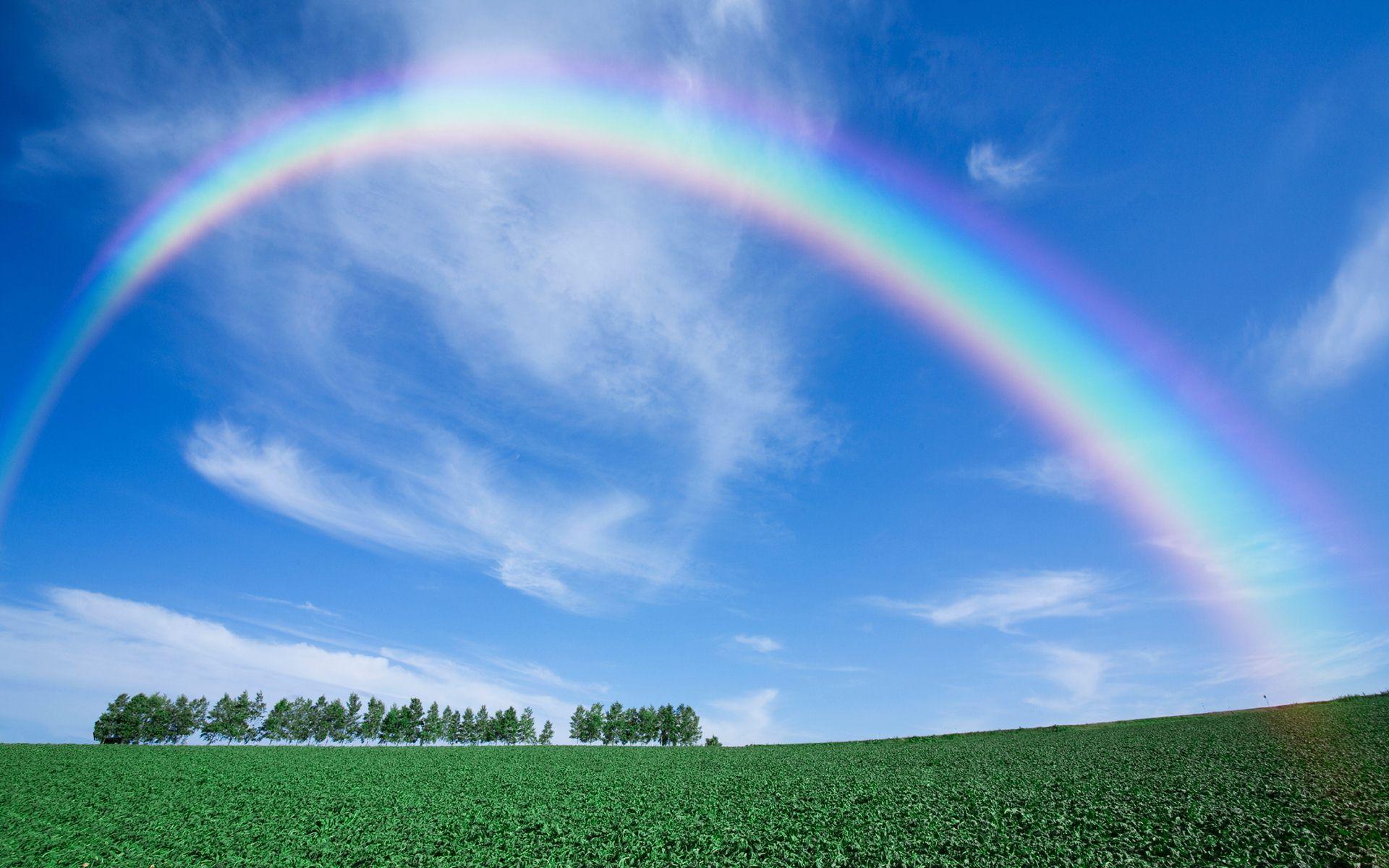 Caveira  Rainbow Six Wiki  FANDOM powered by Wikia