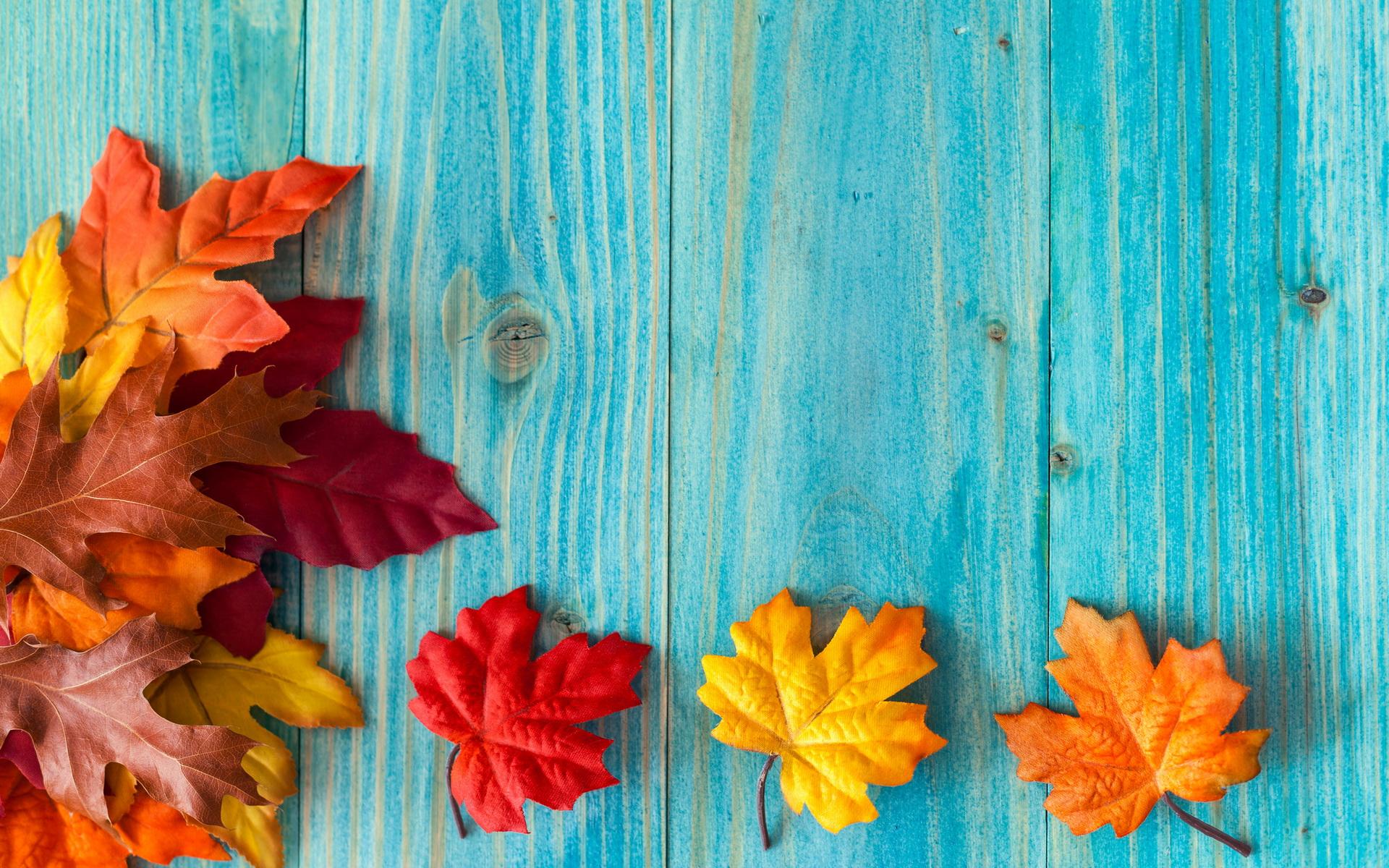 Картинки листья осенние на рабочий стол
